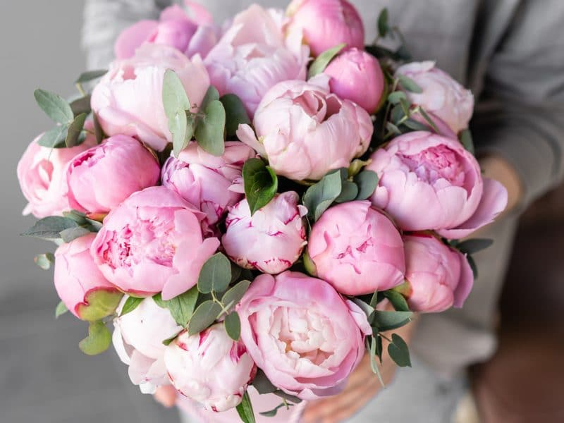 Eşsiz Çiçekler Sipariş Edebilirsiniz